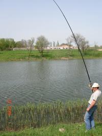 Заказать Туры на рыбалку: чешуйчатый карп, белый амур, карась,толстолоб, осетр