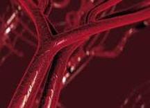 Заказать Профилактика лечение рака