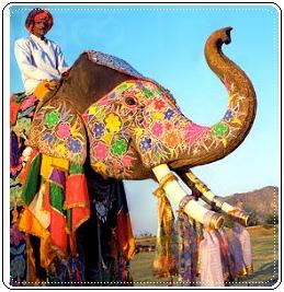 Заказать Индивидуальные туры в Индию