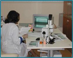 Заказать Капилляроскопия