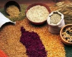 Заказать Экспорт зерновых