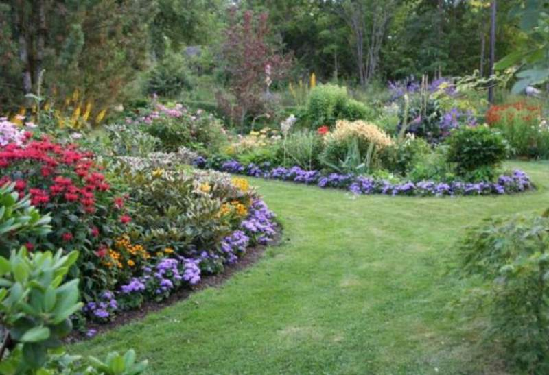 Order Supergardener Kiev. Professional services of gardeners. Professional care of a garden. We provide services in care of cottage towns. Treatment of plants, top dressing. Complex cutting of a garden. Full cycle of care of a lawn. All types of works on a gard
