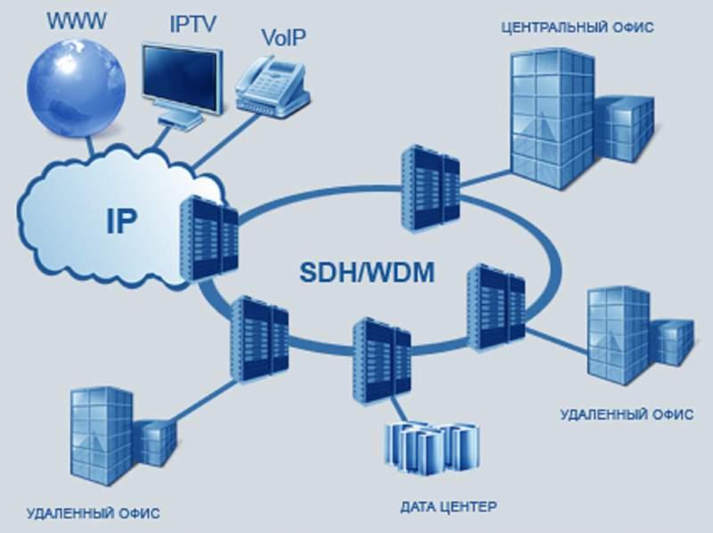 Transport sdhdwdm networks order in kiev transport sdhdwdm networks publicscrutiny Image collections
