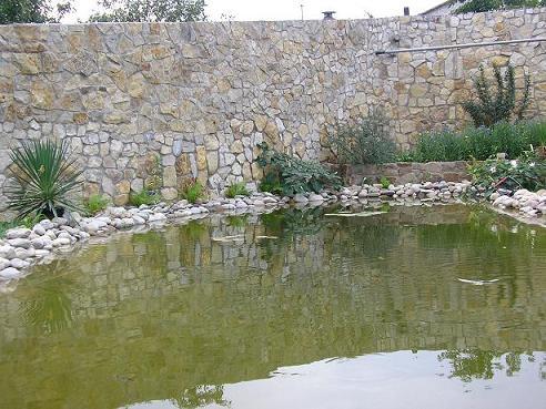 Заказать Очистка водоемов миниземснарядом в Киеве и по Украине