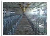 Заказать Строительство свинарников в Украине качественно, клиенто-ориентированный подход к реконструкции и построению свинокомплексов, свинарников