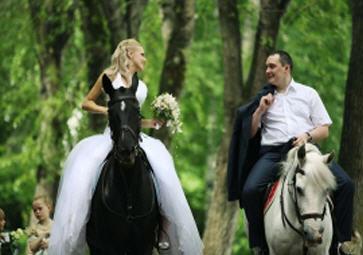 Заказать Прокат лошадей