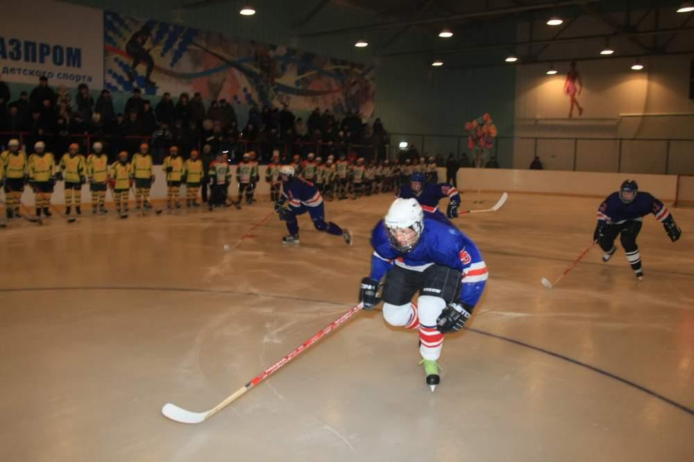 Заказать Оснащение хоккейных площадок