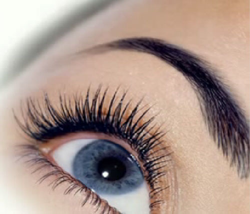 Painting of eyelashes and eyebrows, correction of eyebrows, services ...