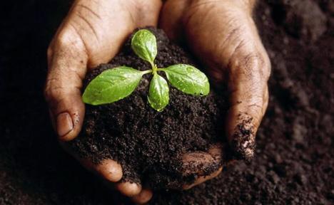 Заказать Оборудование для комбикормовых заводов , Обработка грунта, Опрыскивание, Сбор урожая зерновых, Прессование сена, соломы, Универсальные транпортировочные технологии, Технологии переработки зернофуража
