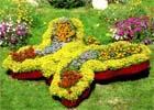 Заказать Сенсорный сад — новое течение в дизайне