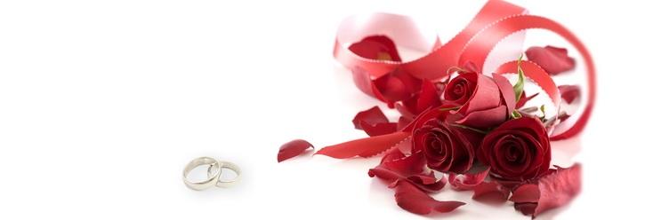 Заказать Свадебные услуги