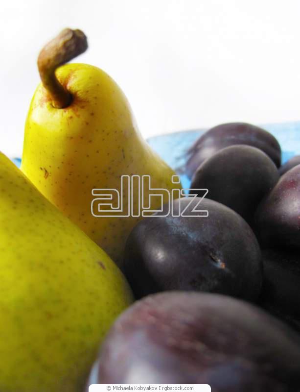 Заказать Переработка овощей и фруктов