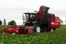 Заказать Услуги по уборке урожая зерновых культур и сахарной свеклы сельхозтехникой (комбайны).