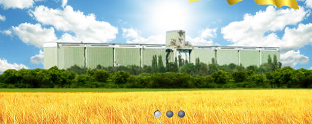 Заказать Хранение зерна от компании Хлебная база №76