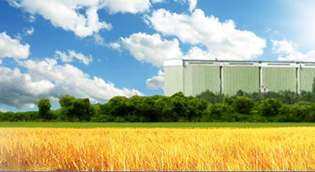 Заказать Заготовка, сушка, хранение семенного зерна от компании Хлебная база №76