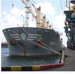 Order Services surveyor and inspection - ship inspection