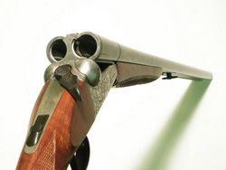 Профессиональное обслуживание охотничьего оружия