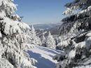 Заказать Зимний отдых. Апартаменты в Австрии на Новый год ирождество!!! Спешите!
