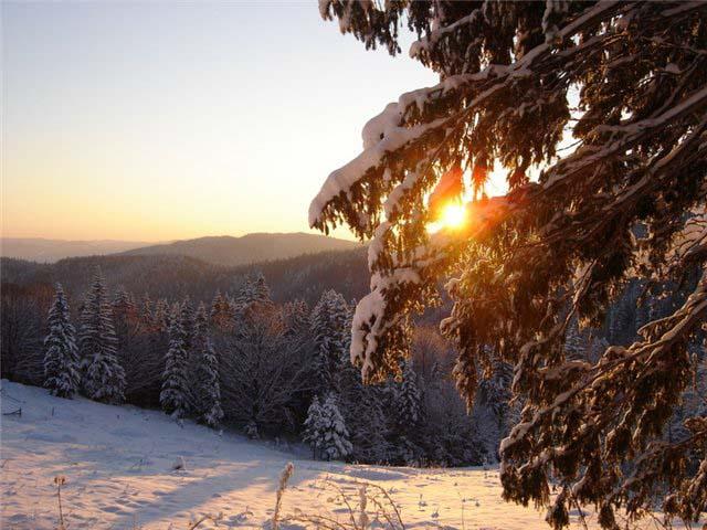 Hовый el Año y la Navidad en los Cárpatos