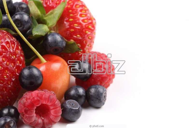 Заказать Переработка и реализация ягод