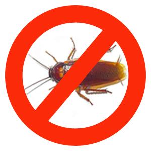 Заказать Борьба с тараканами Киев область