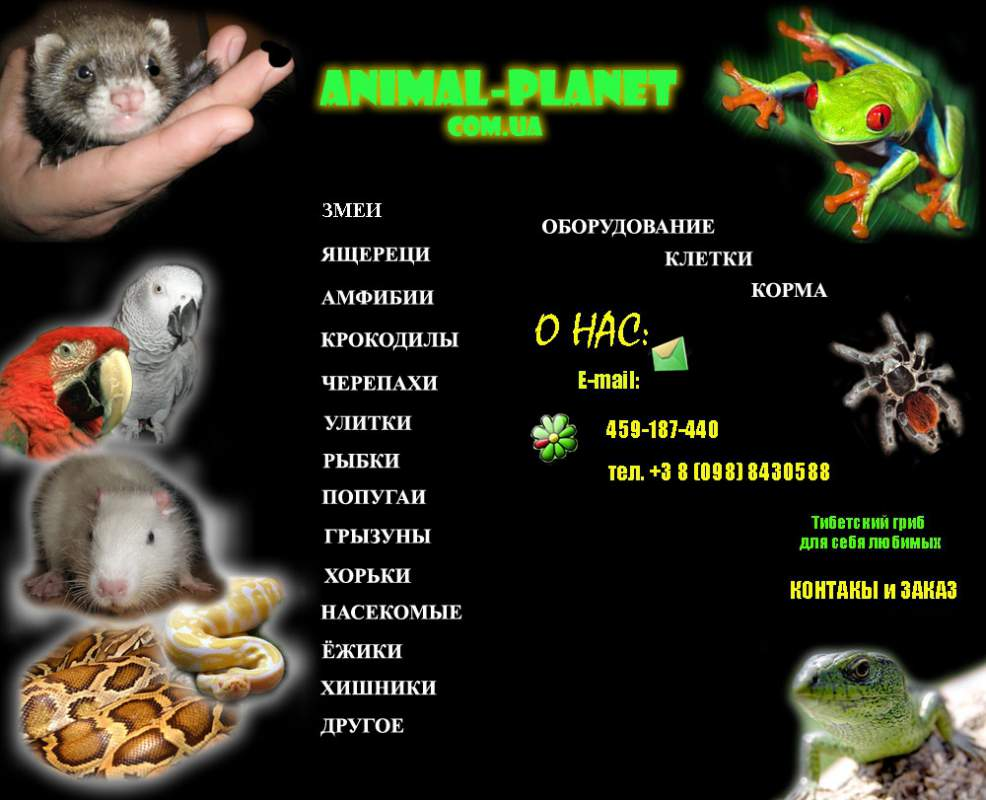 Order Sale of exotic animals