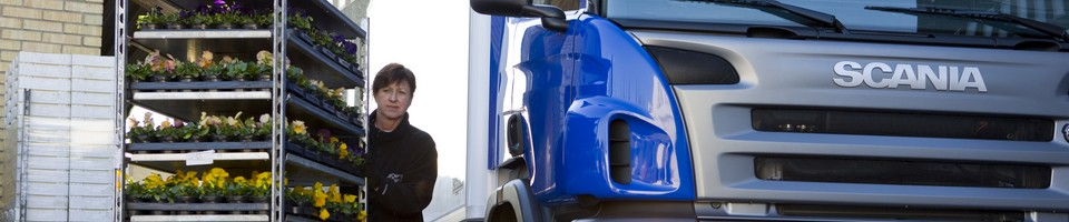 Заказать Перевозка рефрижераторных грузов