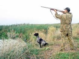 Заказать Предоставление услуг в лесном хозяйстве. Охота и рыболовство, снаряжение.