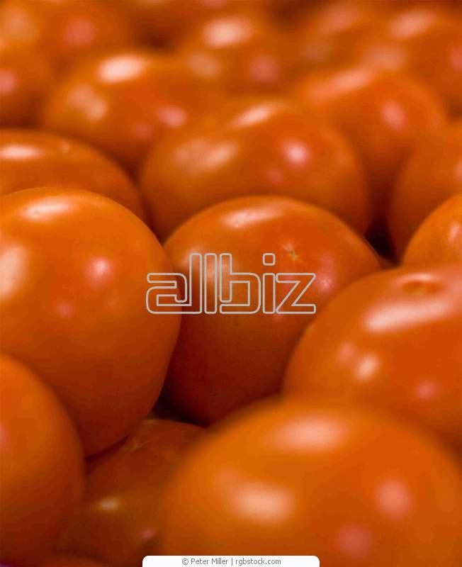 Заказать Упаковка овощей и фруктов