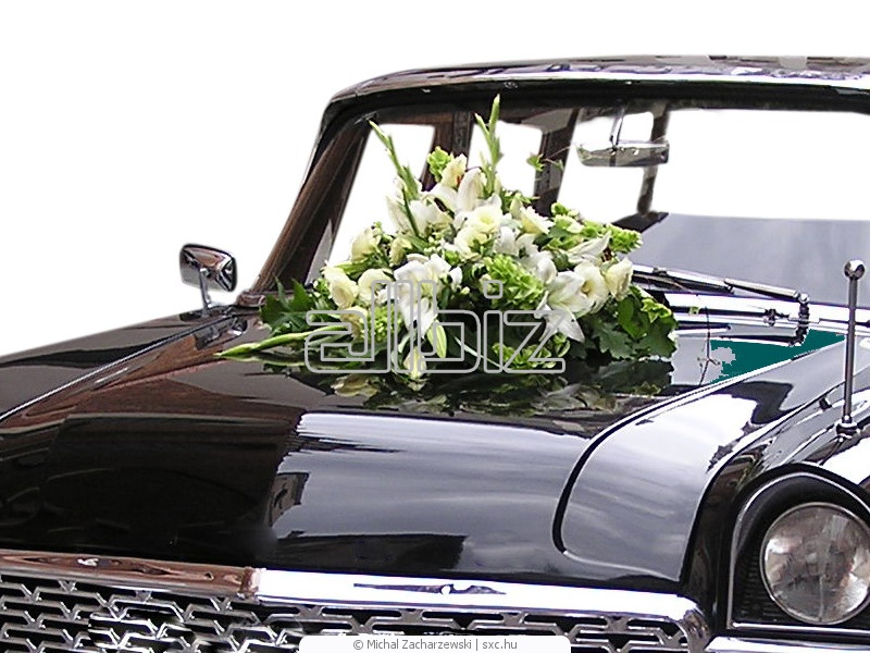 Заказать Декорацыя свадебных автомобилей.