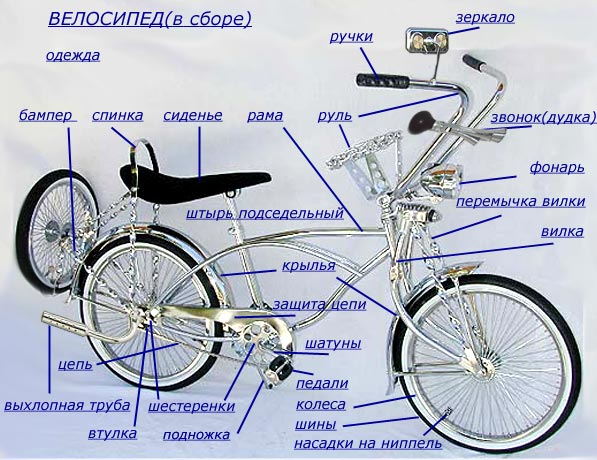 Delivery Of Details For Bicycles Wholesale Of Cycle Spare Parts