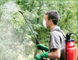 Заказать Химическая защита растений в Украине,Одесса, Купить, Цена, Фото