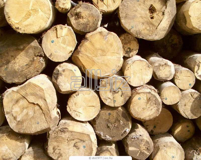 Заказать Обработка лесоматериалов