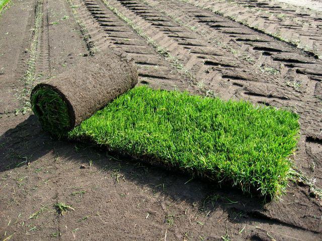 Заказать Выравнивание краев газона
