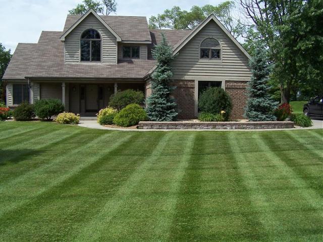 Заказать Реставрация газонов