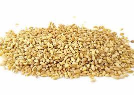 Заказать Доработка семенного материала зерновых