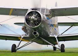 Заказать Комплекс авиационно-химических работ самолетами Ан-2