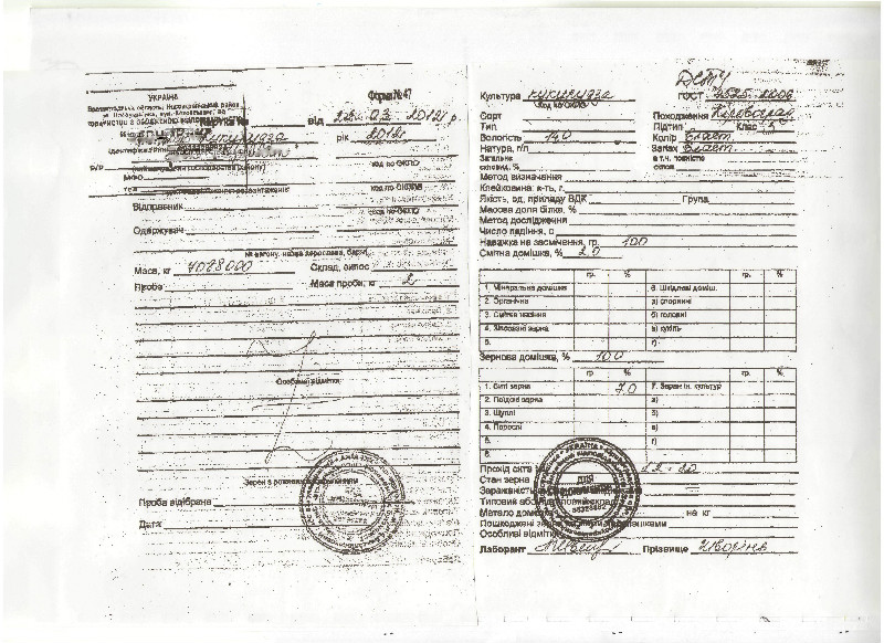 Сертификация зерна сертификация продукции растениеводства огурцы