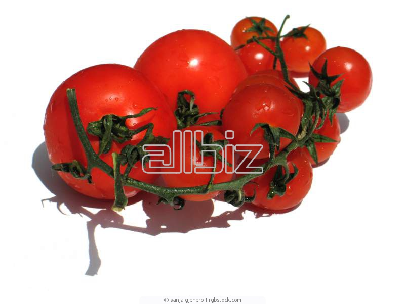 Заказать Переработка сельхозпродукции
