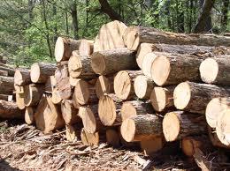 Заказать Деревообработка, в Ровно (Украина), Цена доступная