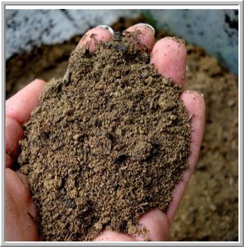 Заказать Анализ грунтов, почв