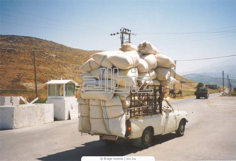 Order Cargo delivery. Delivery services