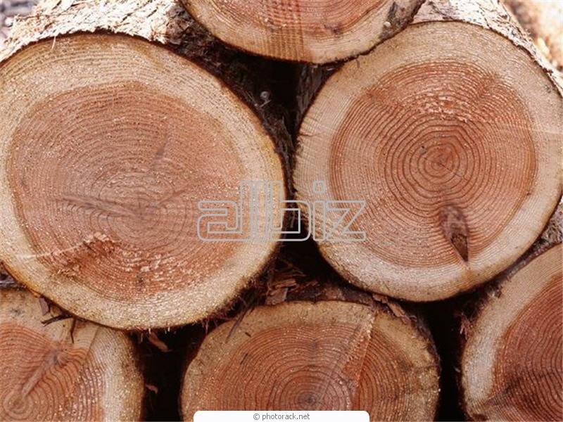 Заказать Огнезащитная обработка древесины