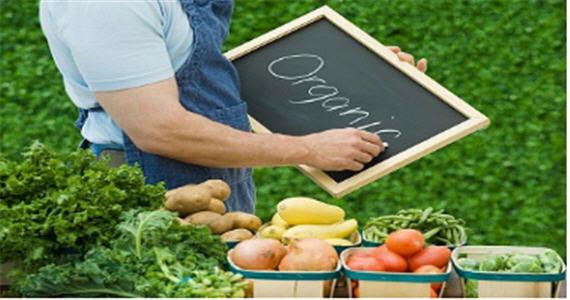 Заказать Получение необходимой информации об органическом производстве