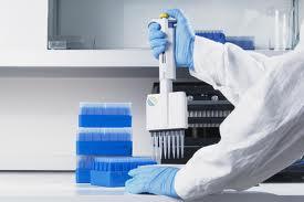 Заказать Лабораторные анализы животных