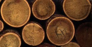 Заказать Распиловка лесоматериалов