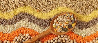 Заказать Доработка семян зерновых, зернобобовых и масличных культур.