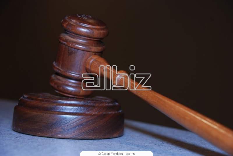 Заказать Ведение дел в суде