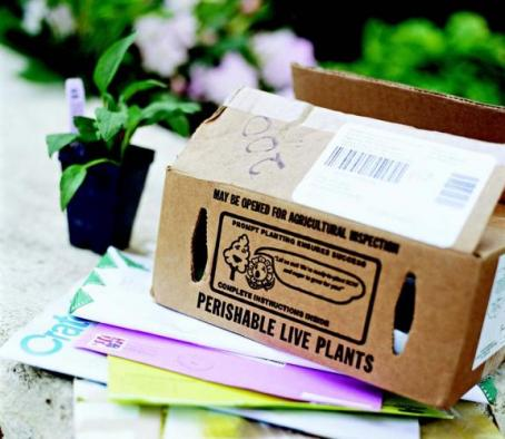 Заказать Утилизация бумаги, бумажной тары и упаковки
