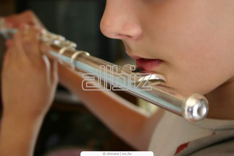 Заказать Музыкальное воспитание детей